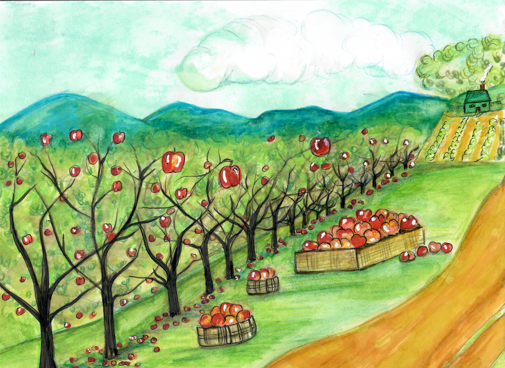 An illustration of Ellijay, Georgia. An apple orchard is in the foreground, the trees full of fruit. Mountains fill the background.